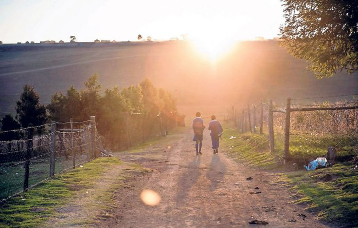 Small steps: Four schools' fight for transport succeeded but thousands of schoolchildren in the Eastern Cape will still have to walk up to 30km a day to and from school to get an education.