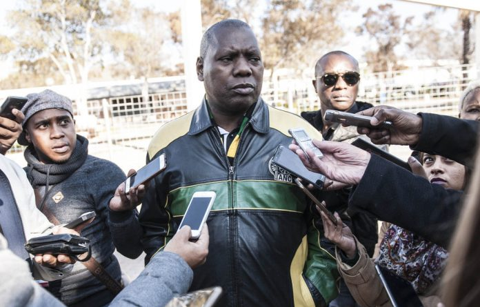 Radical: ANC treasurer general Zweli Mkhize says the party will be sticking to the NDP to grow GDP.