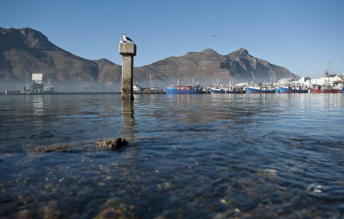 Alarm bells: South Africa could earn the dubious honour of being the first country to allow seabed mining if the government does not reverse its go-ahead to mine the ocean's depths for phosphate.