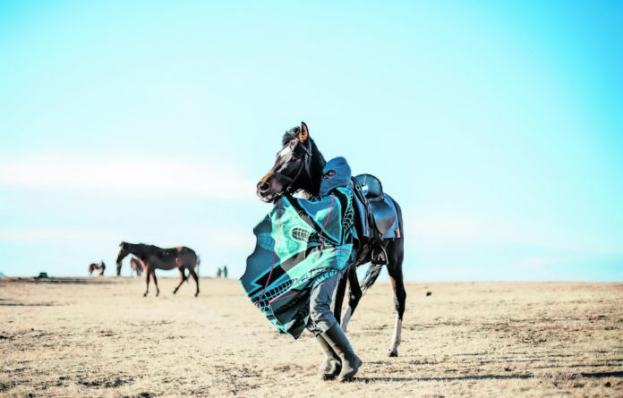 From Jo'burg taxis to Lesotho horseriders: Kgomotso Neto Tleane has brought his own interpretation to a wide range of subjects