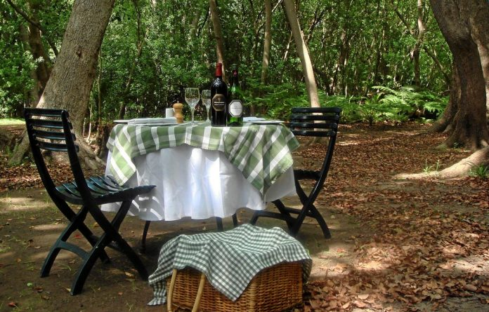 Treats among the trees: A picnic table for two in the forest at Vergelegen.