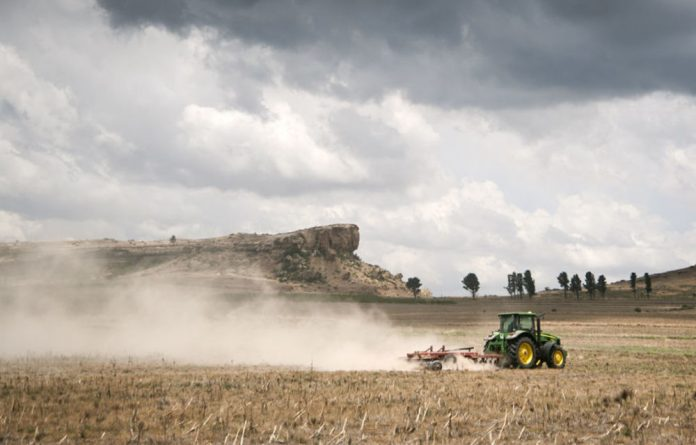 The Free State still boasts endless fields of grain