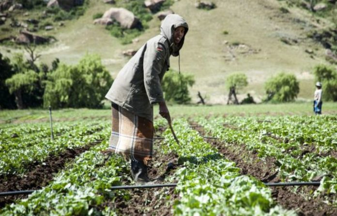 The ANC has suggested that expropriated land should go to the people who work on it. The EFF