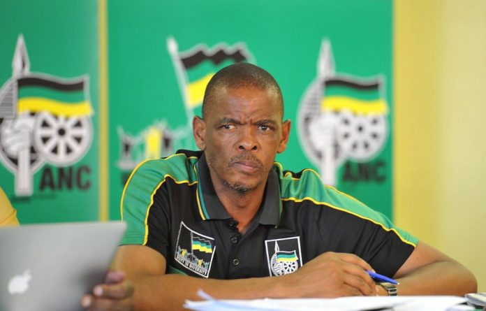 Free State provincial chairperson Ace Magashule.