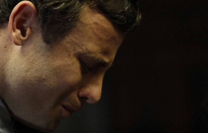 The Oscar Pistorius trial is set to be South Africa's biggest court case with worldwide interest growing every day. We reflect on proceedings so far.