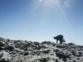 A woman without gloves sifts through piles of wool dumped on a local plot.