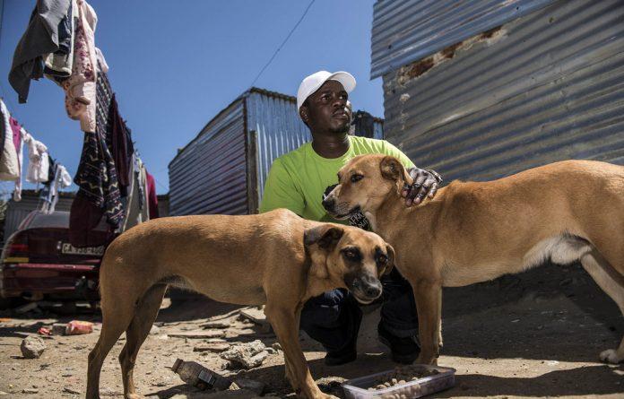 Animal rights activist Kenesias Dambakurima