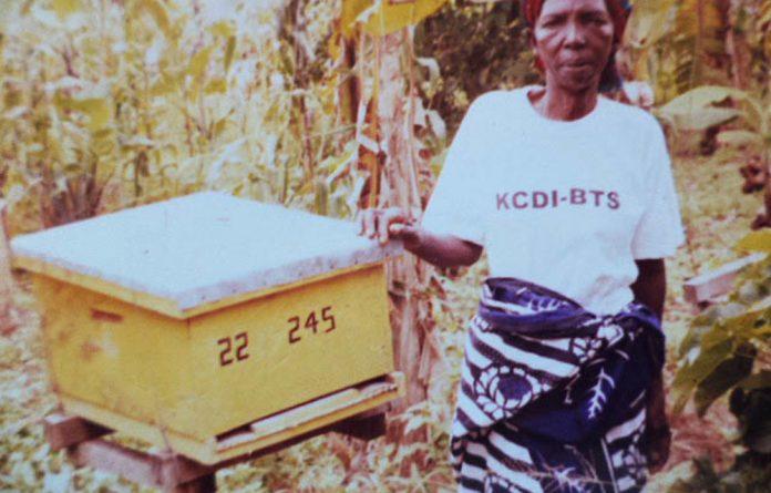 The Kikukwe hives support over 200 women