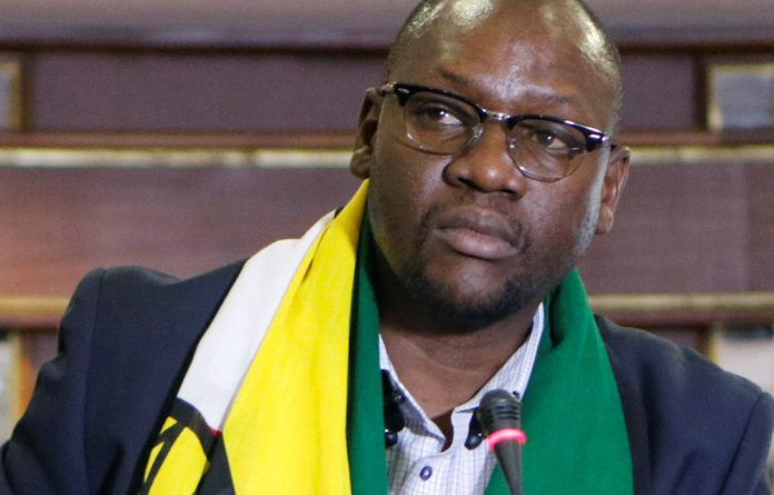 The M&G chatted to #ThisFlag protest pastor Evan Mawarire's sister