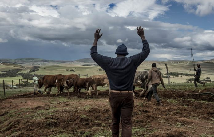 If Ramaphosa confronts how government has been its own impediment on land redistribution