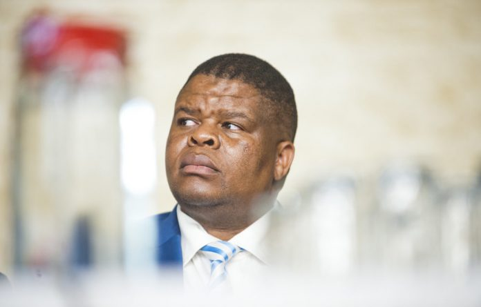Mending cracks: Minister of State Security David Mahlobo says South Africa's national security values have been undermined with the 'purported' leak of top secret cables.
