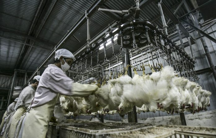 Cheap cheep: South Africa is the fifth most competitive chicken producer in the world