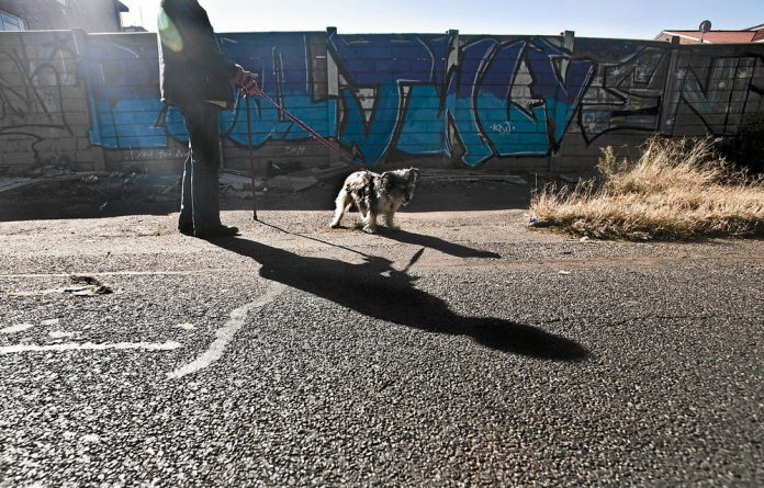 The walking route has changed from a well-pruned café society to a haven for dogs who love to forage for chicken bones.