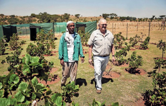 Big buds: Dr Ephraim Mabena and Dr Johan Wentzel want to grow the information centre at Mothong.