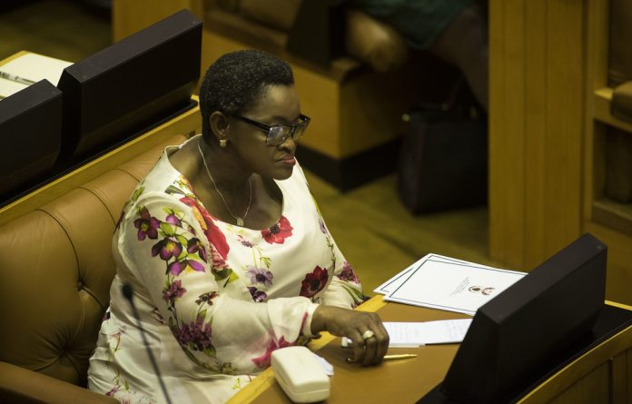 Former minister of social development Bathabile Dlamini.