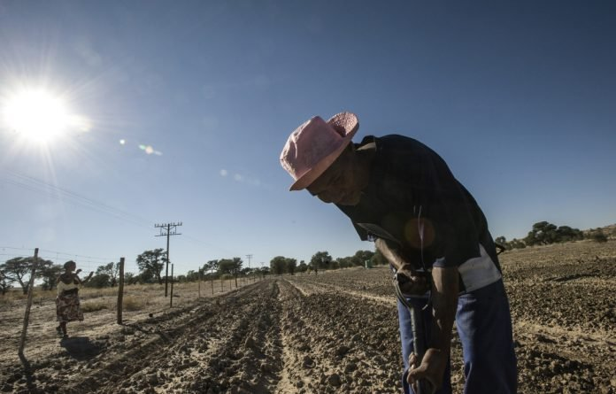 'Van Lingen said the drought had led to job losses on farms and she expected more losses if it did not rain'