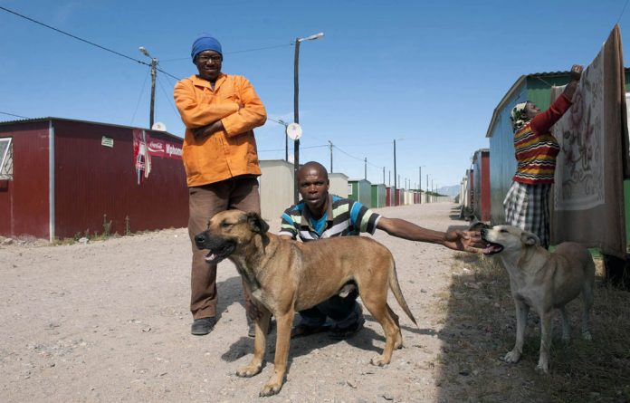 Alfred Matywatywa is the man behind a dog show in which David Zihlangu's cross-Alsatian