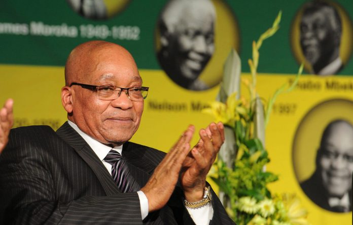 South African Communist Party general secretary Blade Nzimande has called for a law protecting President Jacob Zuma against insults.