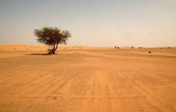 Migrants died of thirst in the Sahara desert after their vehicle broke down.