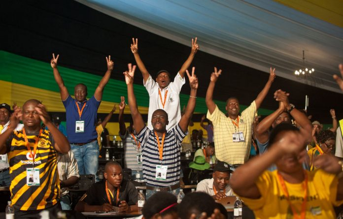 The ANC has chosen its national executive council.