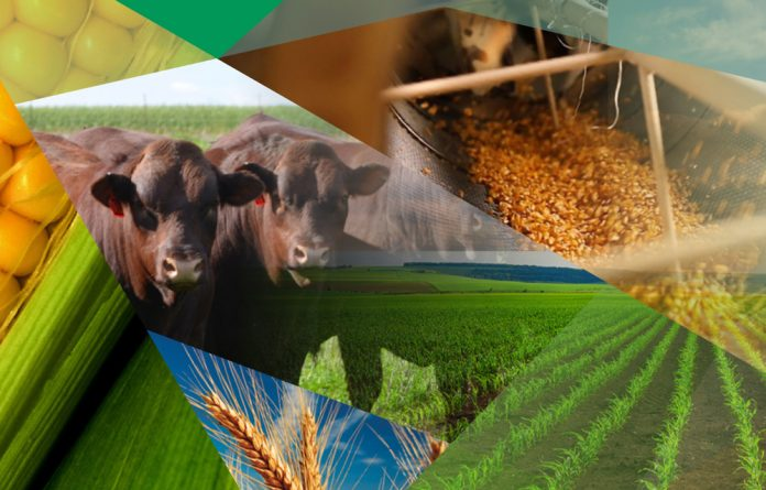 Grain SA's NAMPO Harvest Day enables role players in the agricultural industry to experience the latest technology and products on offer in the farming industry first-hand
