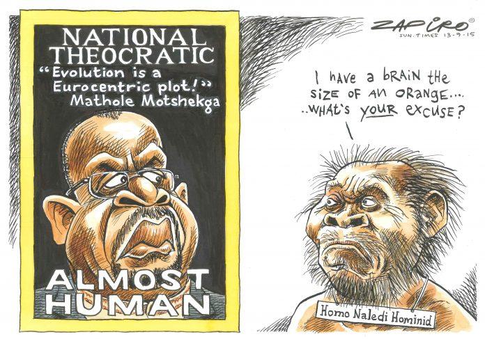 Zapiro: A statement worthy of Homo naledi