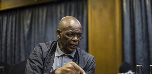 ANC SG Ace Magashule is suing Buyisile Ngqulwana for defamation. He wants the court to declare that the allegations are false and to order Ngqulwana to retract them.