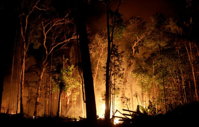 In the tale of two burning rainforests