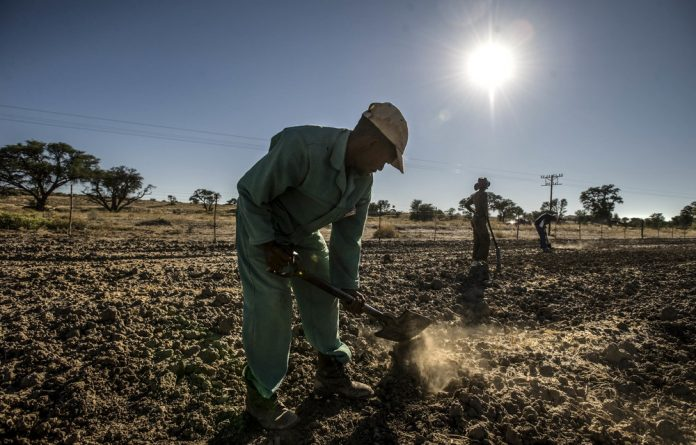 Drought damage: Droughts in the past two years have made the poor even more vulnerable because food prices rise and they cannot depend on their own crops for sustenance.