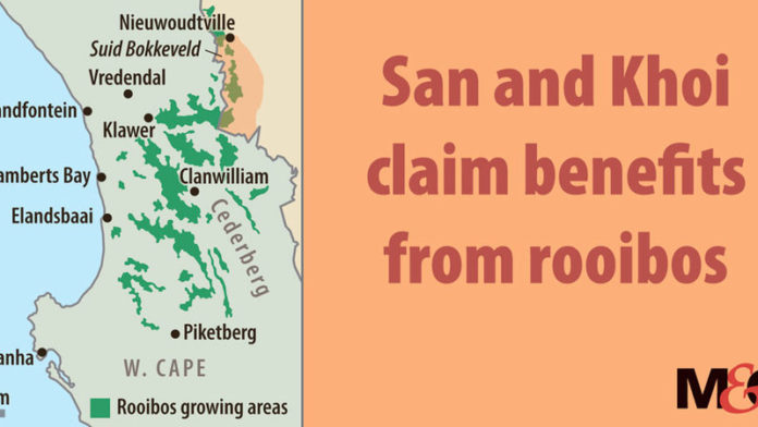 San and Khoi claim benefits from rooibos