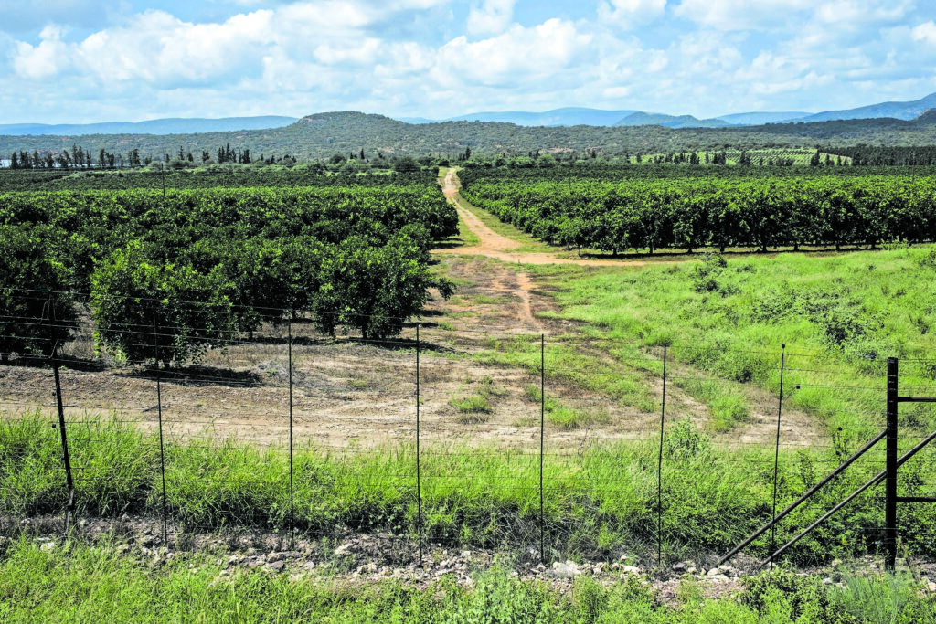 , Controversial Musina-Makhado Special Economic Zone gets green light, The World Live Breaking News Coverage & Updates IN ENGLISH