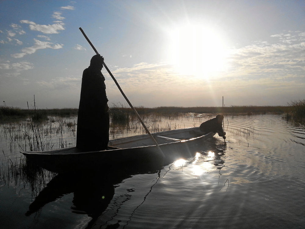 Life in the reeds: The Marsh Arabs known as Madan. Kevin Davie