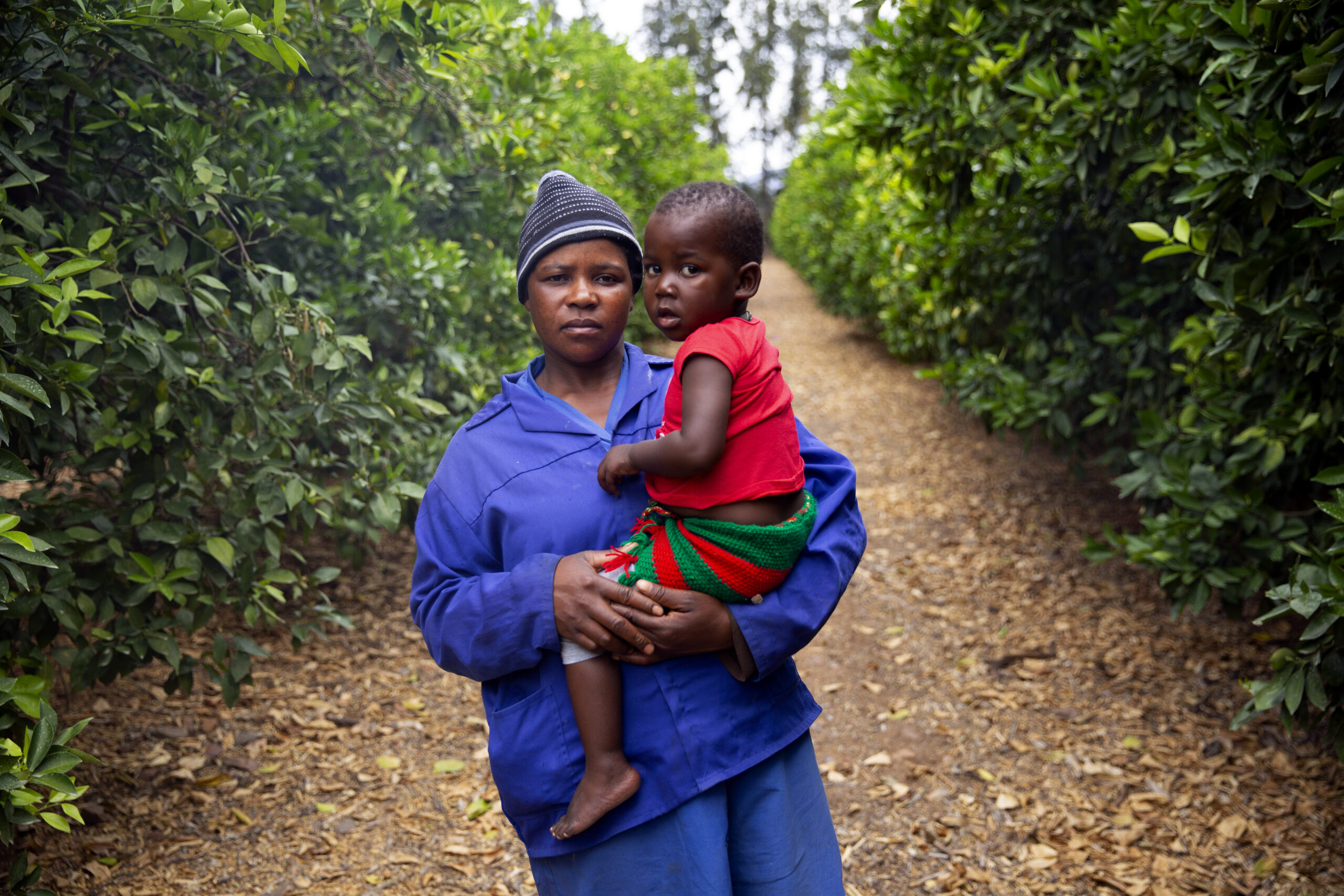 When the fruit is packed into boxes, many farm workers disappear, making it difficult to keep them on HIV treatment. Dylan Bush
